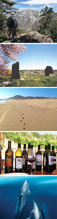 Baja Bound July Newsletter