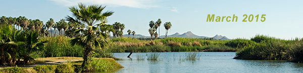 Baja Bound Bulletin - March 2015