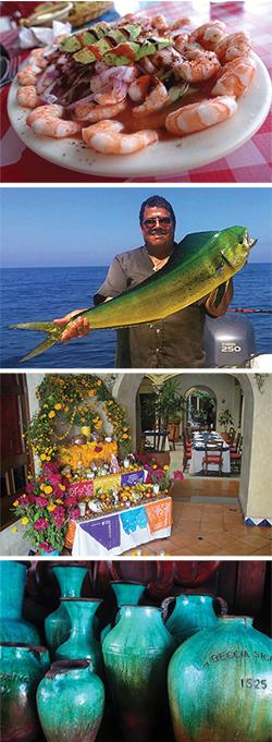 Baja Bound October Newsletter